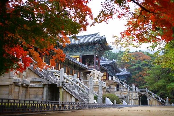 Du lịch Hàn Quốc ghé thăm chùa Bulguksa