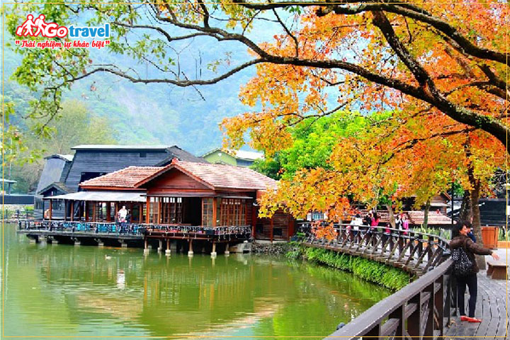Ngắm lá phong khoe sắc tại Che Cheng