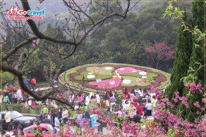 Du lịch Đài Loan mùa xuân khám phá những điều bất ngờ