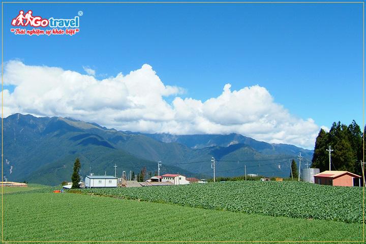 Fushoushan Farm