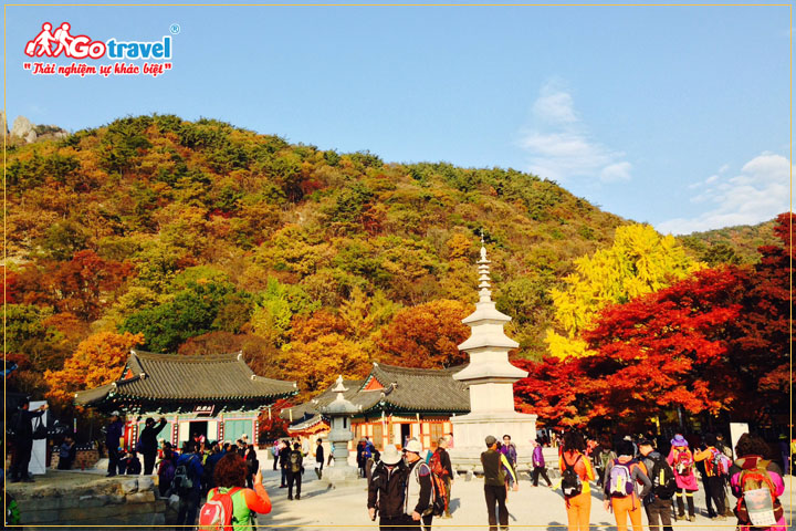 Chi phí du lịch Hàn Quốc theo tour là 13 - 15 triệu
