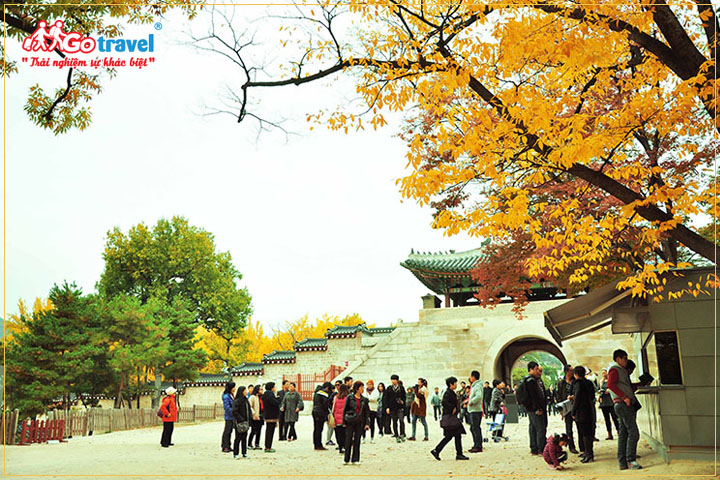 Du lịch Hàn Quốc mùa nào đẹp nhất
